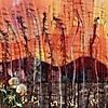 Australien: Busch Feuer_1